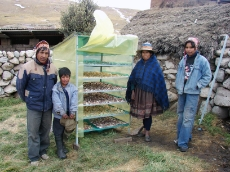 Bolivia: This family from Potosí in Northern Bolivia owns an efficient solar dryer with a special plastic film to dry their harvested maca. GIZ provided technical advice and gave orientation about where to obtain the plastic foil for the solar dryer. <br />