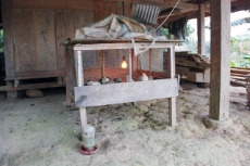 Indonesia: The heat-bulb warming the small chicken during night is powered by electricity from a micro-hydro project in Indonesia. <br />